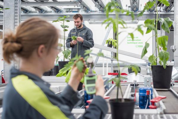 INRA-CMI Roullier partnership: a new technology transfer